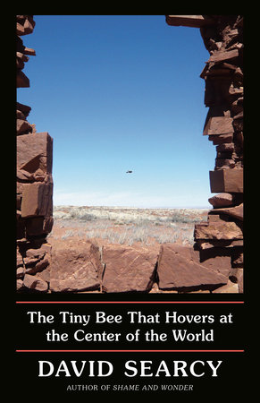The Tiny Bee That Hovers at the Center of the World by David Searcy